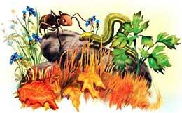 Сказка Как муравьишка домой спешил
